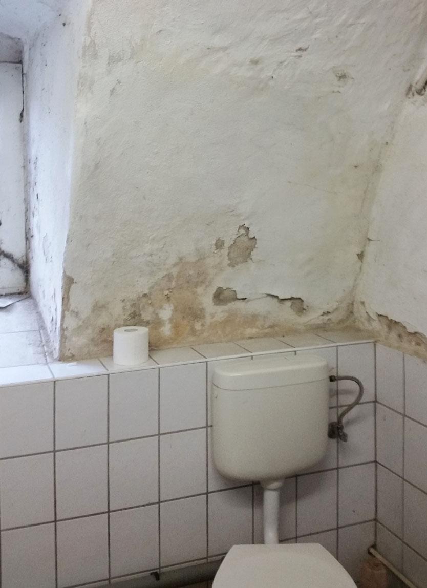 Klassischer Fall– Salpeterausblühungen dieser Arf finden sich oft an Außenwänden vorwiegend sehr alter Gebäude.